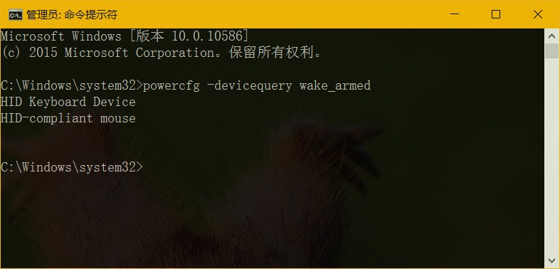 powercfg –devicequery wake_armed