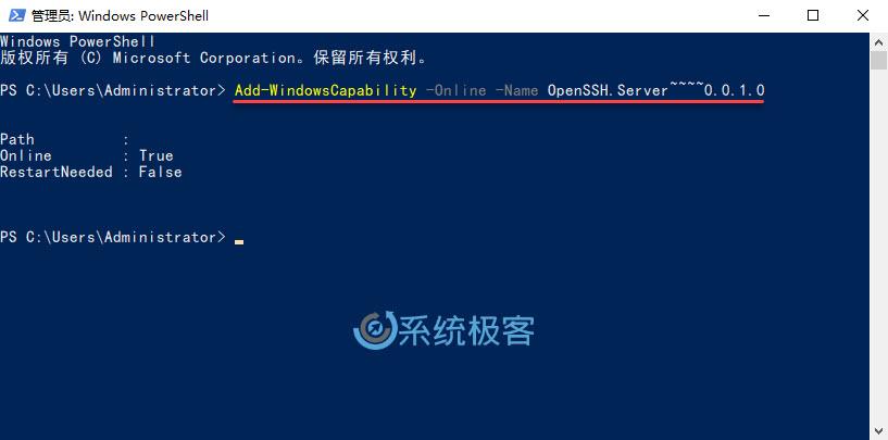 安装 OpenSSH Server 组件